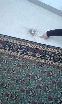 絨毯から砂